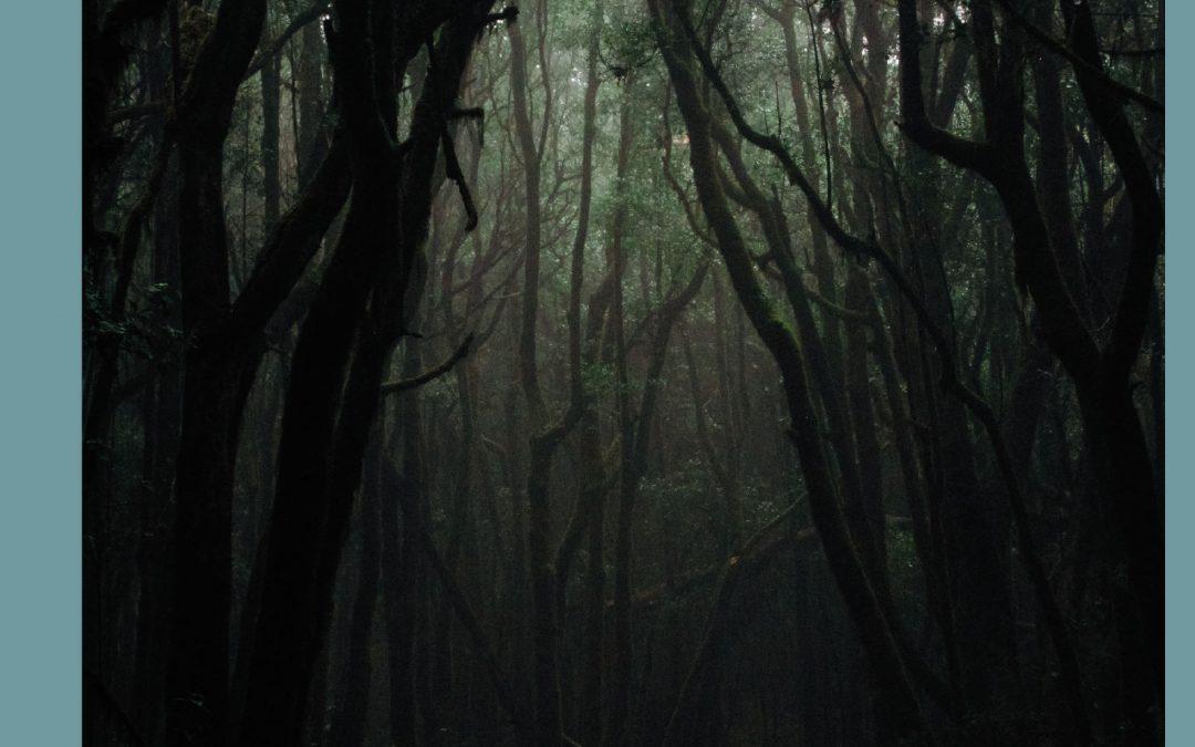 Beitrag: Halloween – die Dämonen in Dir